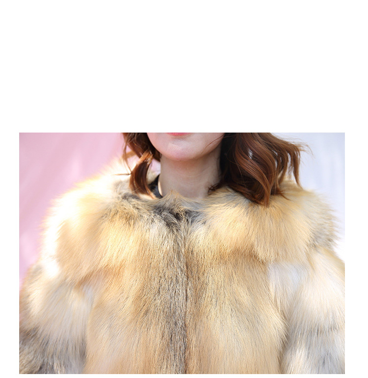 Golden Island Fox Fur 988 details 1